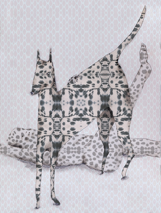 Dotted Dog